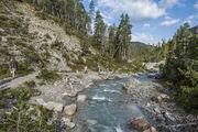 Die Schweizer mögens wild: Alpen-Safaris liegen im Trend